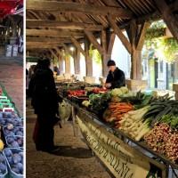 De 16e-eeuwse markthall van Questembert (Bretagne)
