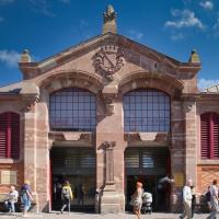 De overdekte markt van Colmar